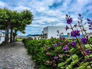 L'hébergement avec piscine pour les vacances, Açores - globetrottair.ch