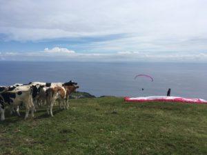 Stage de parapente, Açores - globetrottair.ch
